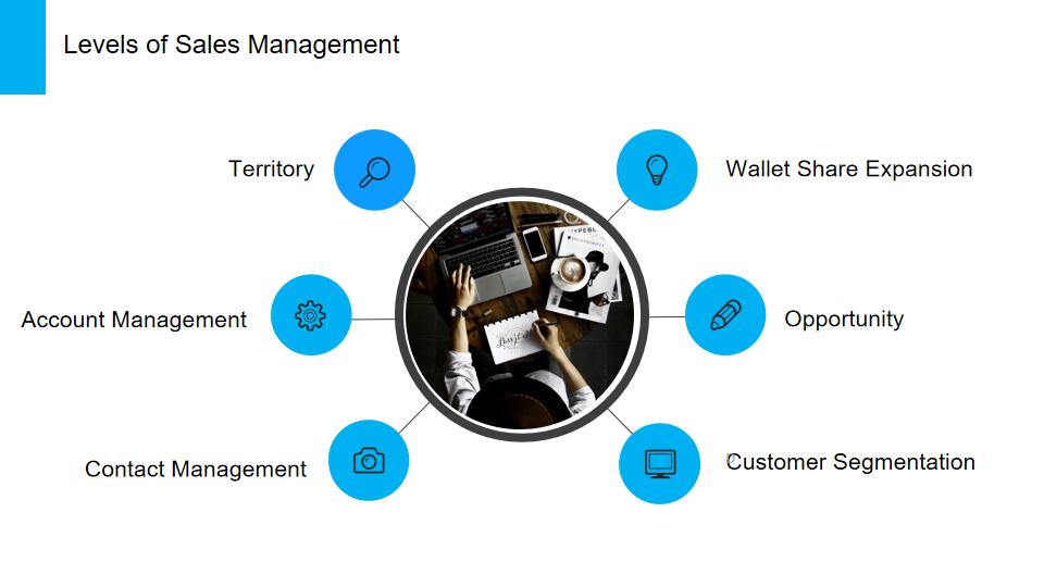 Levels of Sales Management Chart