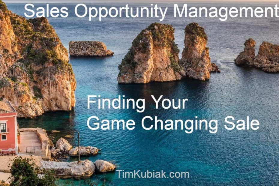 Finding Your Game Changing Sale - Sales Opportunity Management