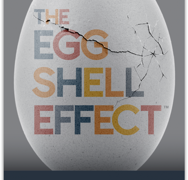 The Eggshell Effect by Joel Holc